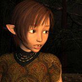 Half-elf adventuress curious elven.
