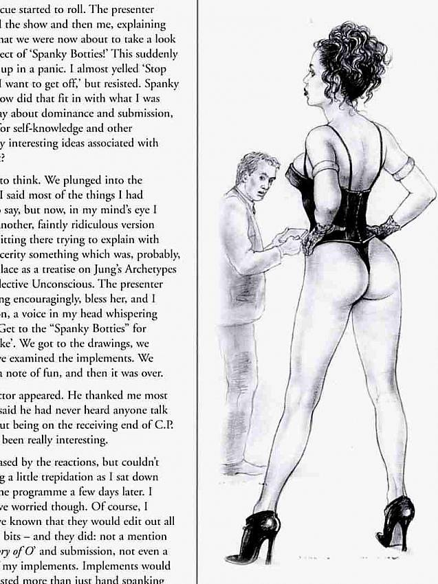 Illustrated Penetration Sex Stories